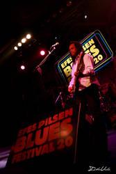 Blues Fest - 5 by ishn