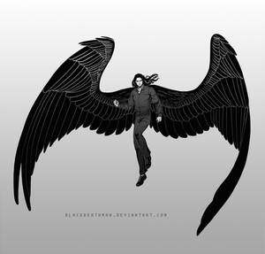Commission: winged