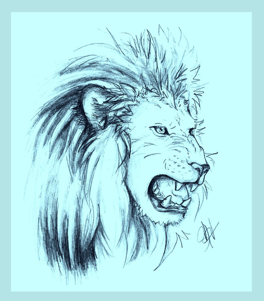 A Lion's Roar by Avaira on DeviantArt