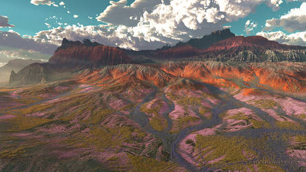 The Blooming Desert by dblasphemy