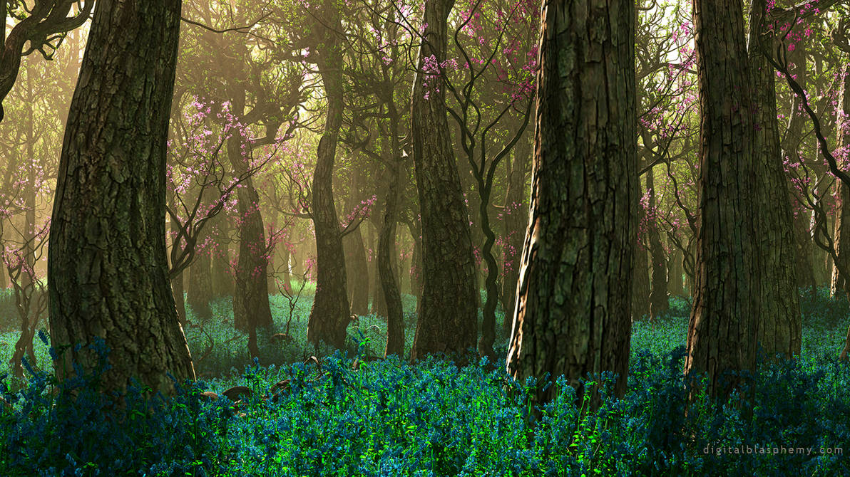 Bluebell Season by dblasphemy