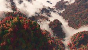 Misty Ridge (Autumn)
