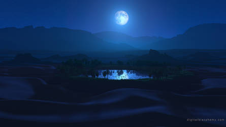 Water is Life (Night)