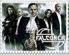 Falconer Stamp by MorbidMorticia