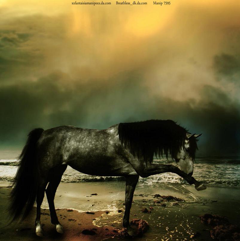 Dapple Colors by RemorseHP