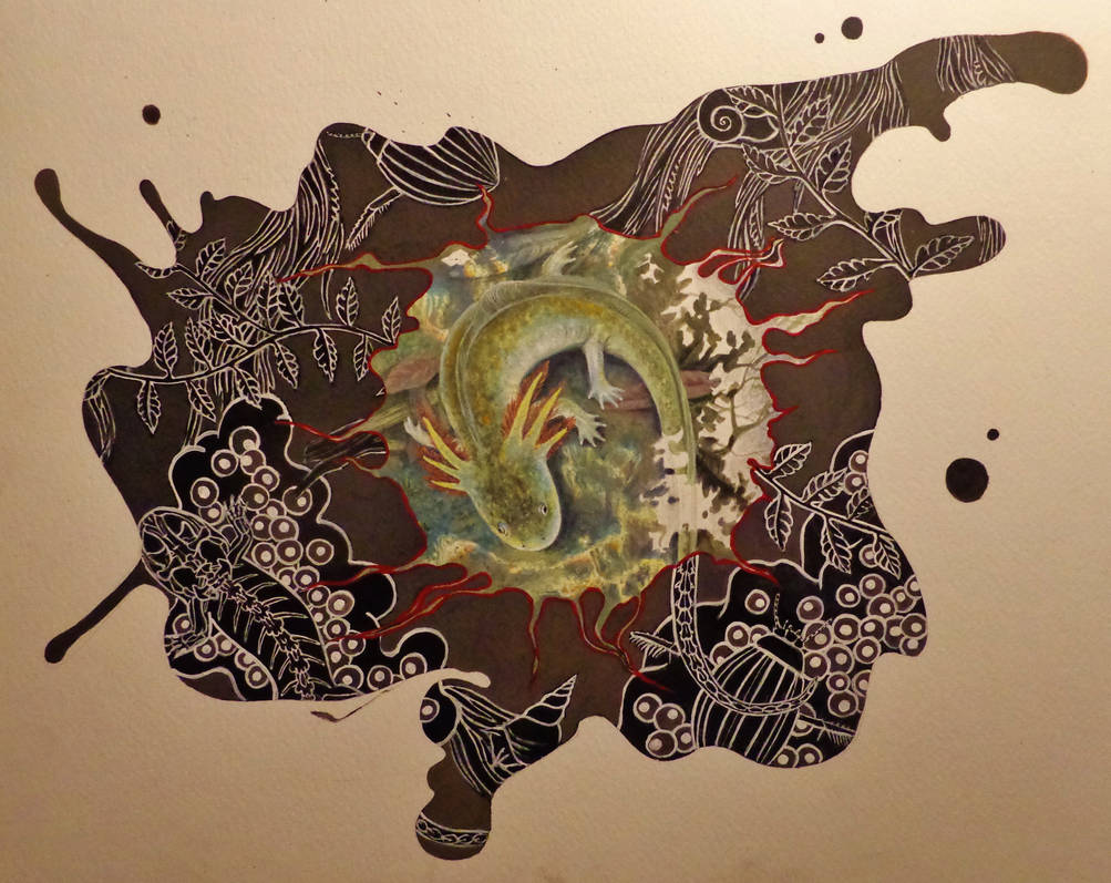 Petrification by Danio-Boots