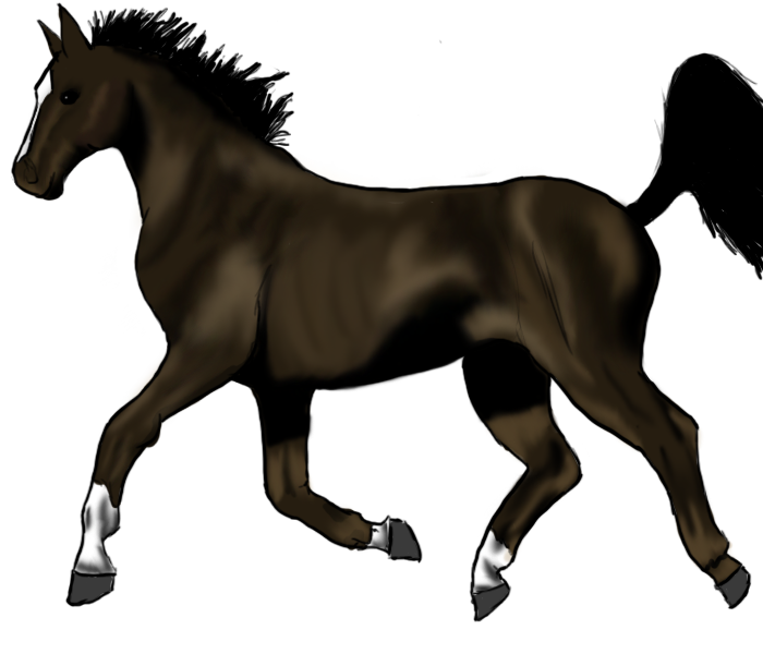 Trotting horse by Mouskat on DeviantArt
