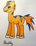 Buddy like pony