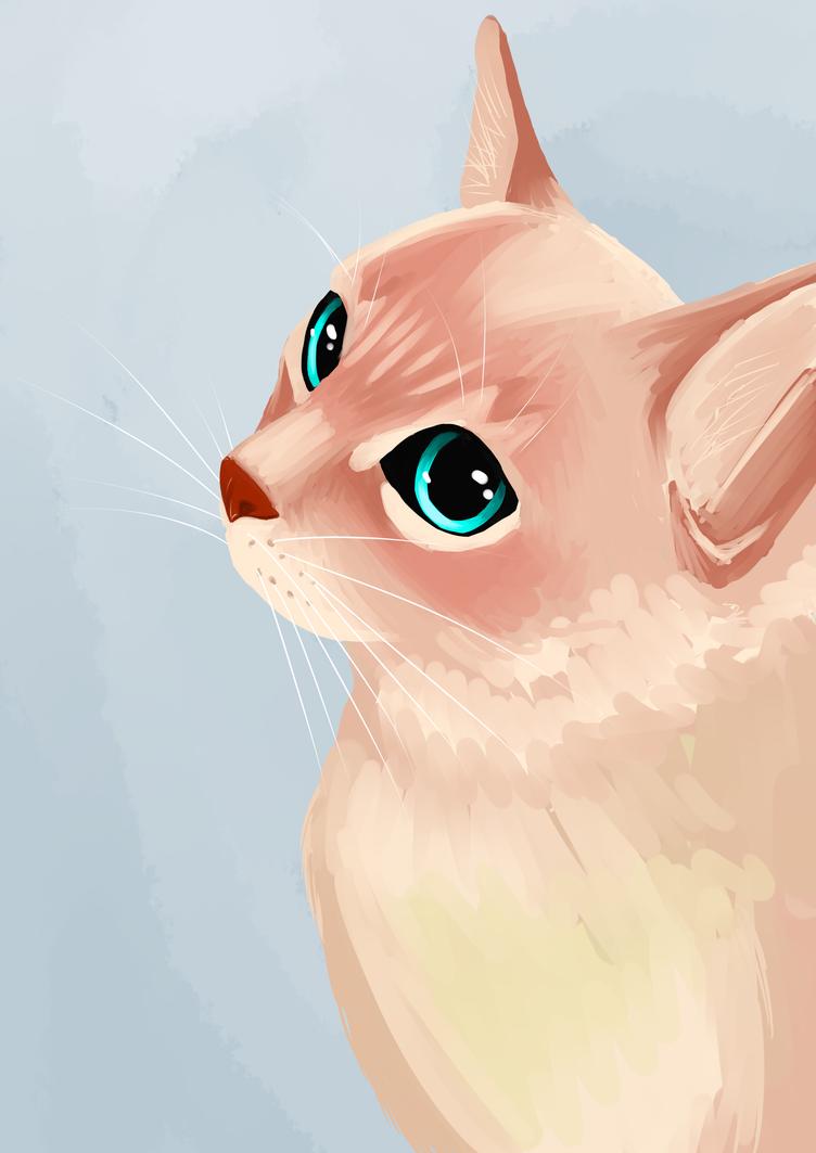 Kitty Cat by Degari