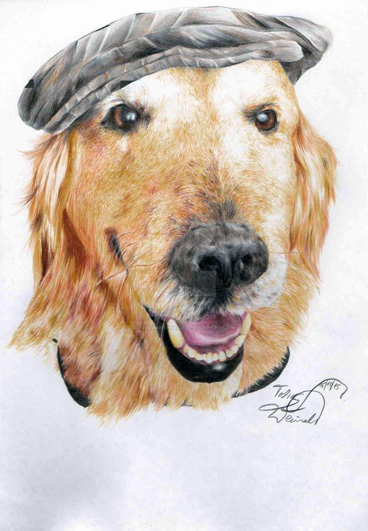 Doering Dog by TobiasWeinald