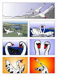 Extremofilo Pagina 1 de 4
