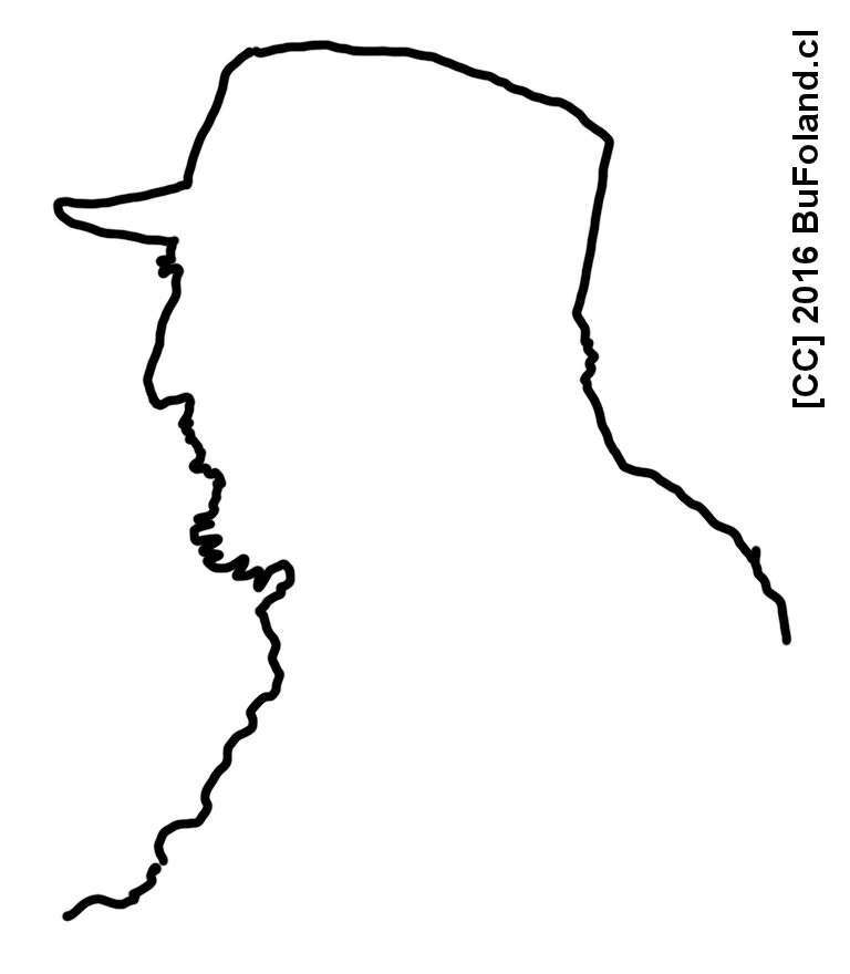 Fidel by Bufoland