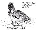 Chicken - Pollo