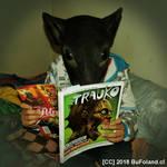 Nino Rata Disfrutando de la Revista Trauko