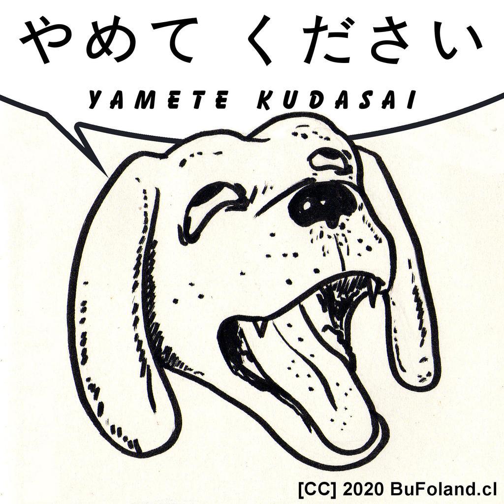 Yamete Kudasai