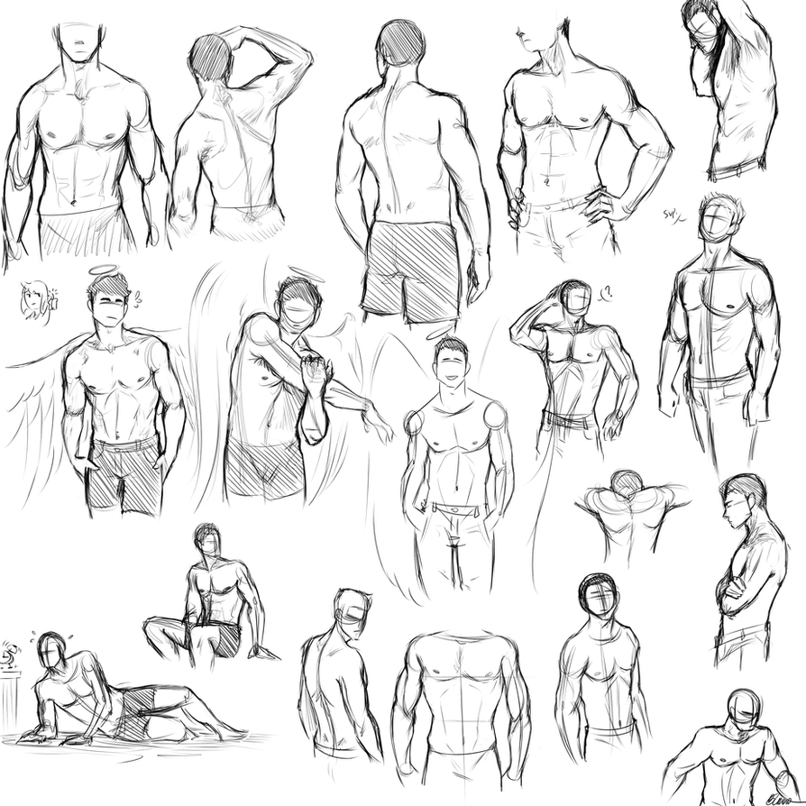Anatomy Studies- Male Torso by RainSong777 on DeviantArt