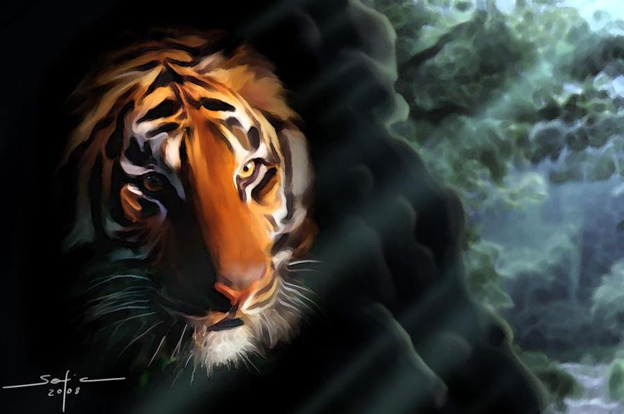 Hidden tiger by sofiaiervolino