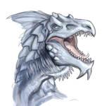 White Dragon sketch
