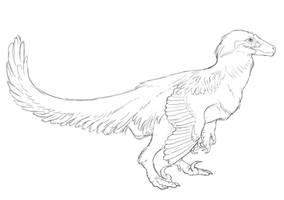 Raptor sketch