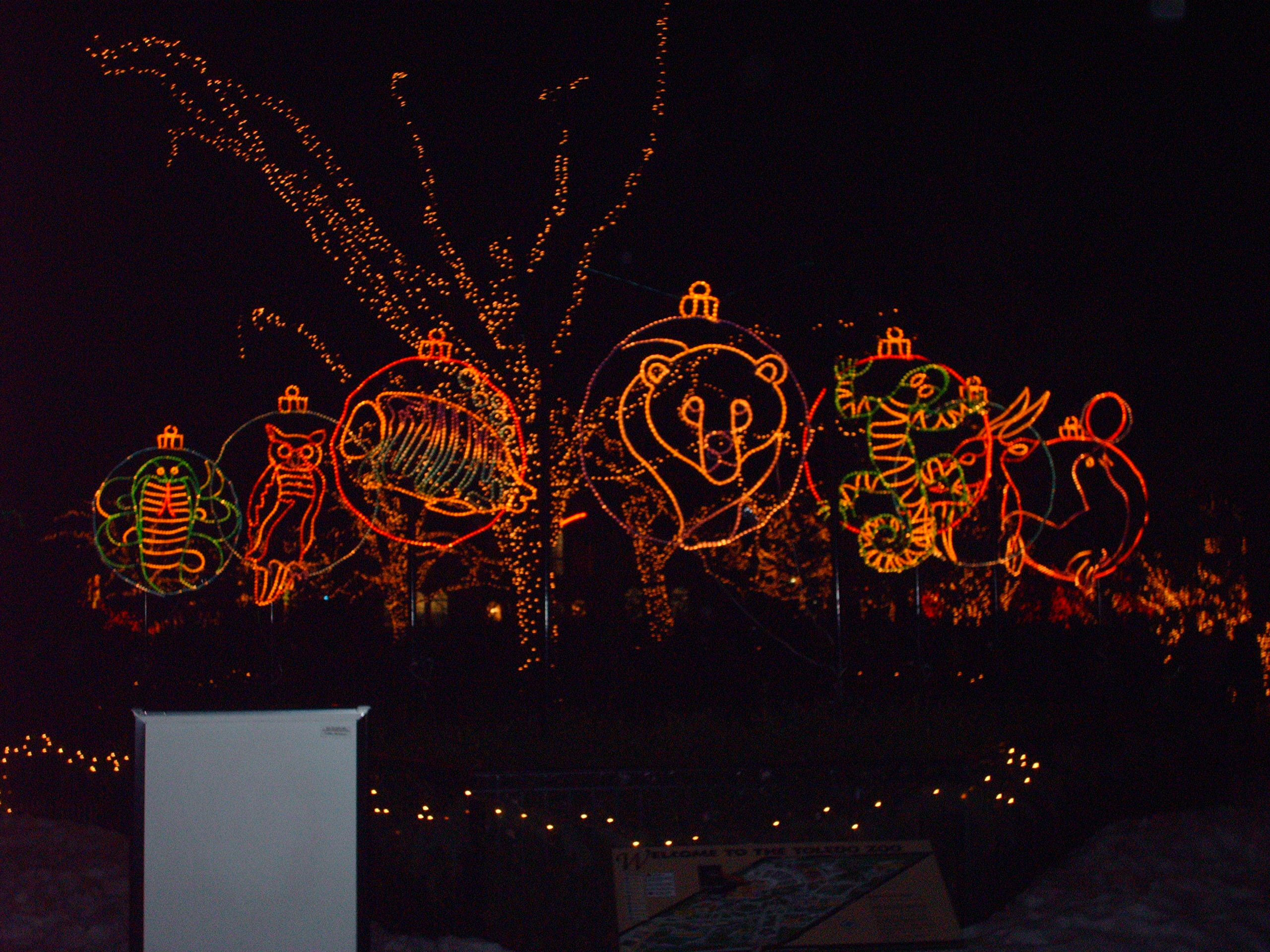 Lights at The Toledo Zoo by AnimeKing503