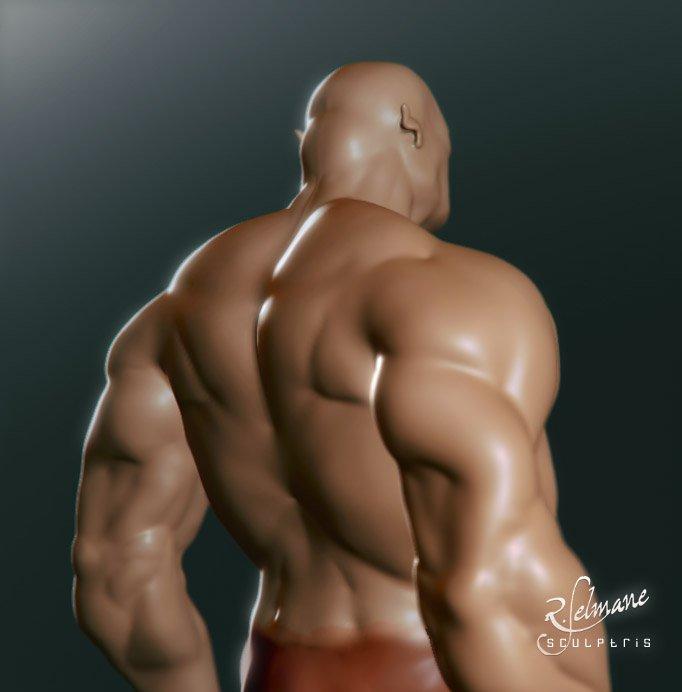 body's muscles (wip) by selmane on deviantart, Muscles