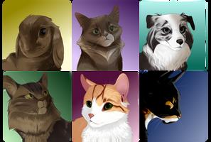 Pet Portrait Requests