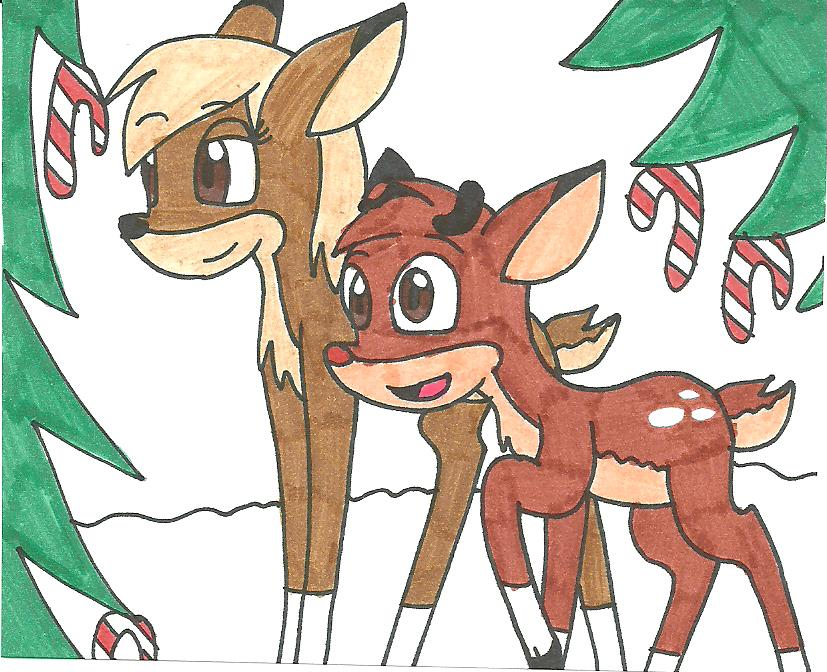 The Candycane woods by cmara