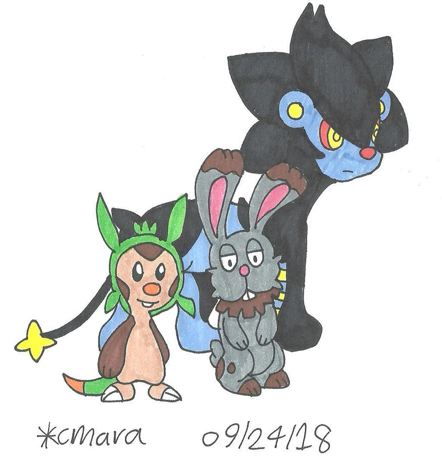 Chespin, Bunnelby and Luxray by cmara