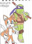 Fox and Turtle geniuses
