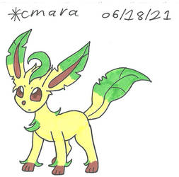 Leafeon puzzled