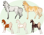 Horse Mix Batch - SOLD by Miss-Adopts