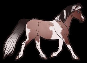 Horse Adopt 316 - Sold