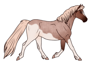 Horse Adopt 317 - Sold