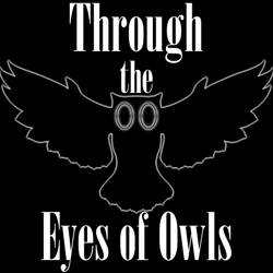 Through the Eyes of Owls