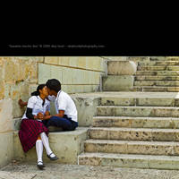 besame mucho dos by skiphunt