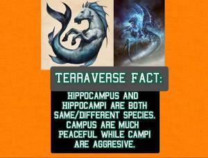TerraVerse Fact 134