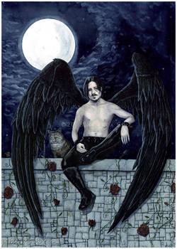 Midnight Angel -- Commission