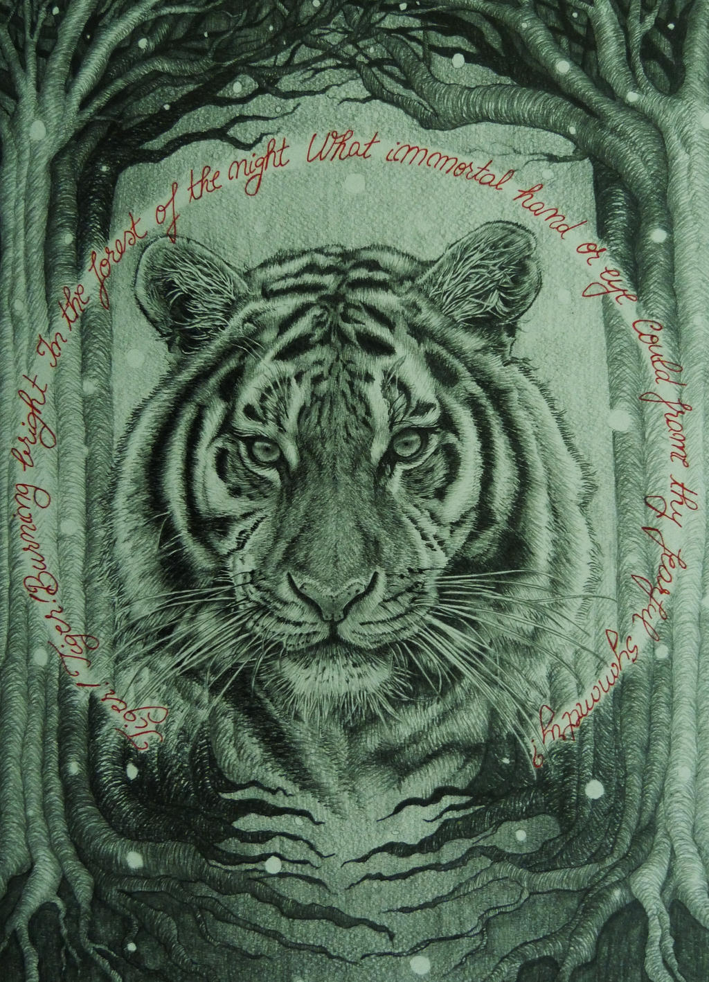 Tiger!Tiger! by AlexndraMirica