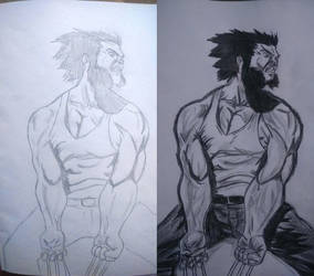 Wolverine work in progress/work done by Remarkvc