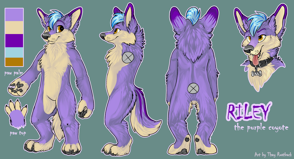 Riley Grayson Character/Fursuit Reference 2013 by RavenShayne on ...