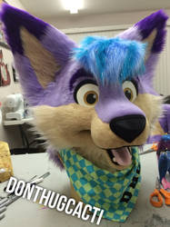 Riley Coyote Fursuit (preview)  by RavenShayne