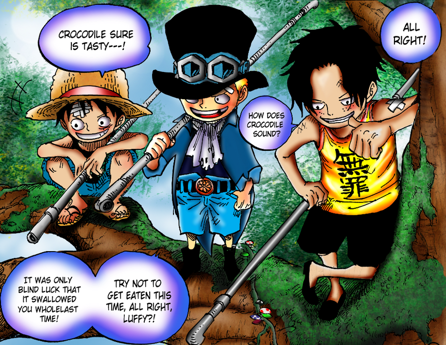 Luffy, Sabo and Ace by janashlley09 on DeviantArt