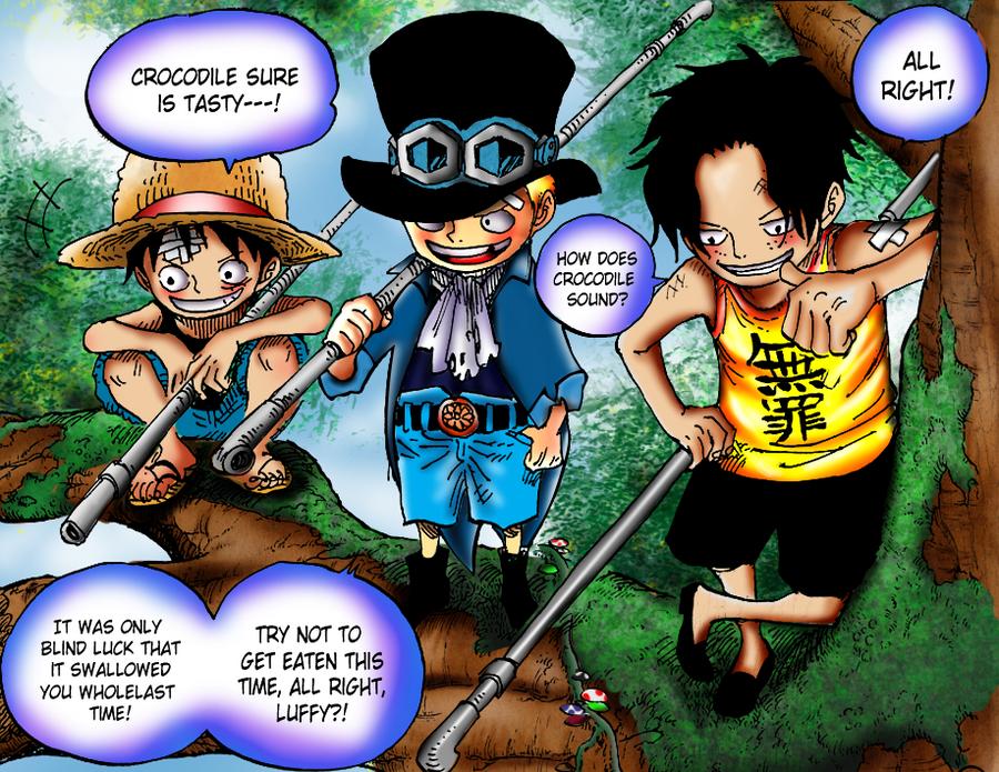 Luffy, Sabo and Ace by janashlley09 on DeviantArt