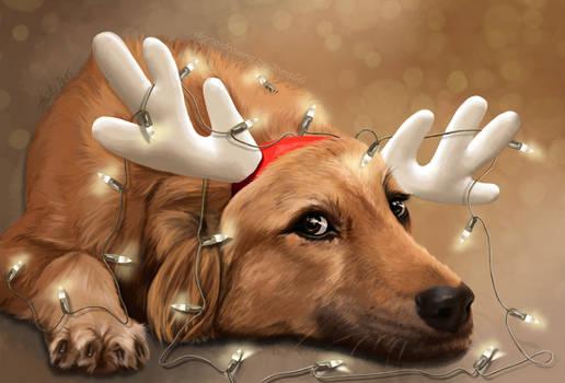 Xmas Tangled - Little Reindeer Dog