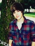 justin drew Bieber 8