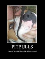 PITBULLS by DEMIAH