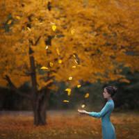 autumn maker