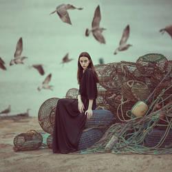 birds by ankazhuravleva