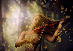 Nature's Serenade