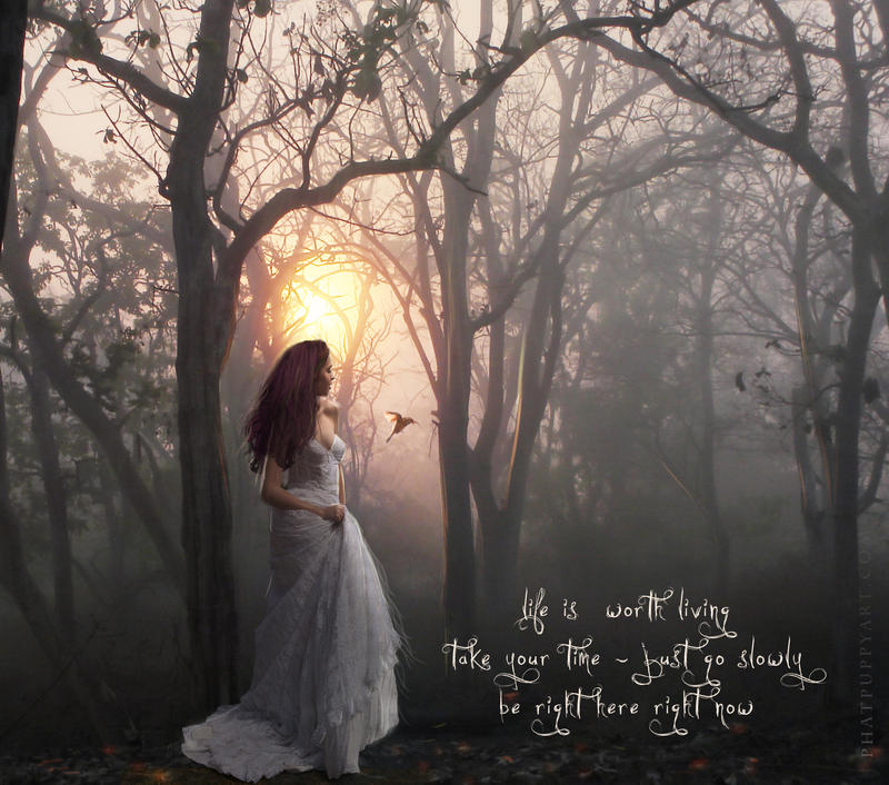 Life is Worth Living by Phatpuppyart-Studios